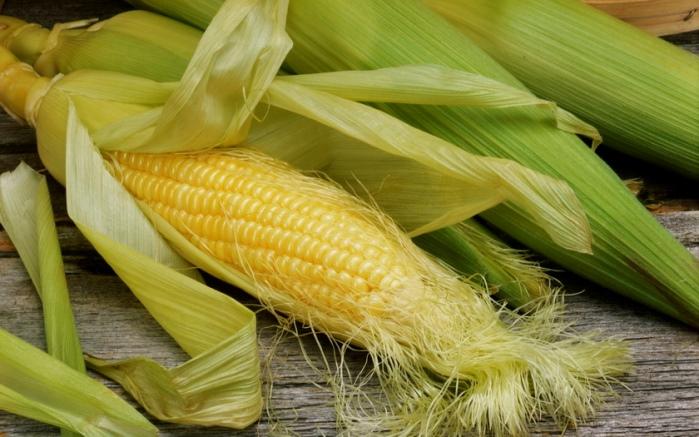 Изготовление ткани из необычных составляющих. Кукуруза.