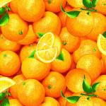 299б Апельсины