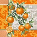 Апельсиновый сад 1