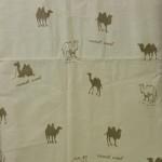 Верблюд вулл