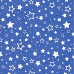 555-4 Звезды